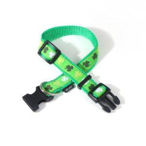 Medium Shamrock Dog Collar