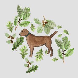 Chocolate Labrador blank greeting card - choclabinsta 500x500