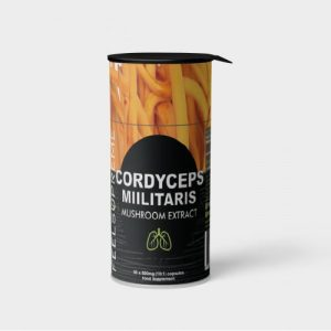 Cordyceps Militaris - cordyceps 500x500