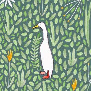 Runner Duck Greeting Card - duck card2 500x500