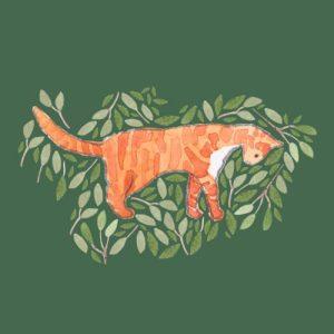Ginger Tabby Cat blank greeting card - ginger tabby 500x500