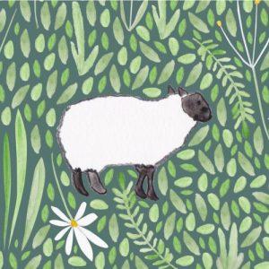 Sheep blank Greeting Card - sheep card2 500x500