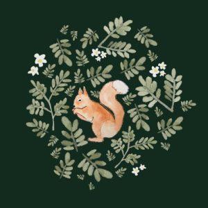 Squirrel blank greeting card - squirrel 500x500