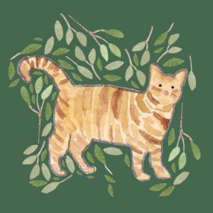 Tabby Cat blank greeting card - tabby cat 500x500
