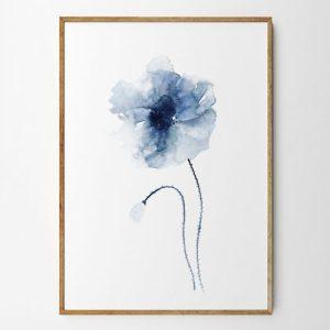Carla Art Prints - 13 palm 2048x 500x500