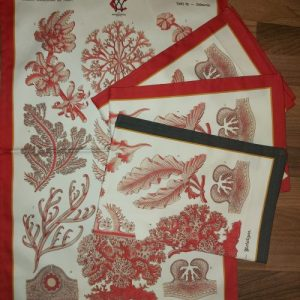 Elegant Red Sea Coral & Algae Tea Towel Antique 19thC Print Coral Red Border