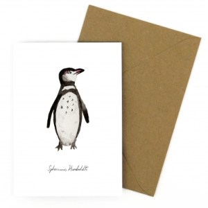 Humboldt Penguin A6 Greetings Card