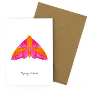 Rosy Maple Moth A6 Greetings Card