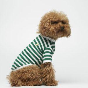 David Emerald Striped Organic Cotton T-Shirt