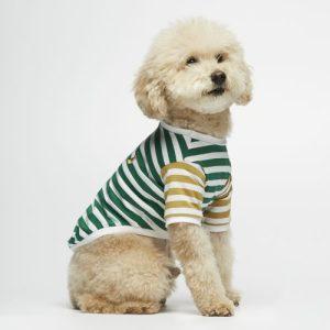 Emerald and Dijon striped organic cotton David T-shirt