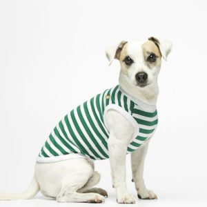 Daniel Emerald Striped Organic Cotton Bodysuit