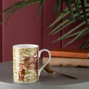 Highland Cow Bathtime Mug