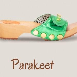 Metallic Parakeet Clogs