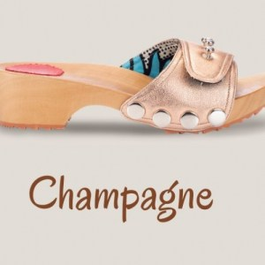 Metallic Champagne Clogs