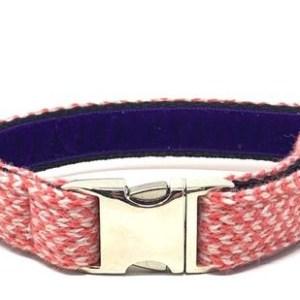 Geranium & Dove - Harris Design - Dog Collar - geraniumdoveharris 590x 500x309