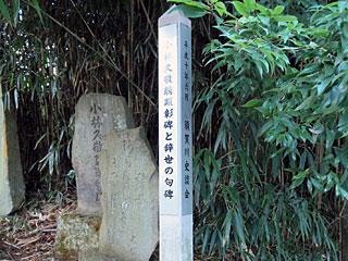 kobayashi26