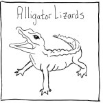 Alligator Lizards