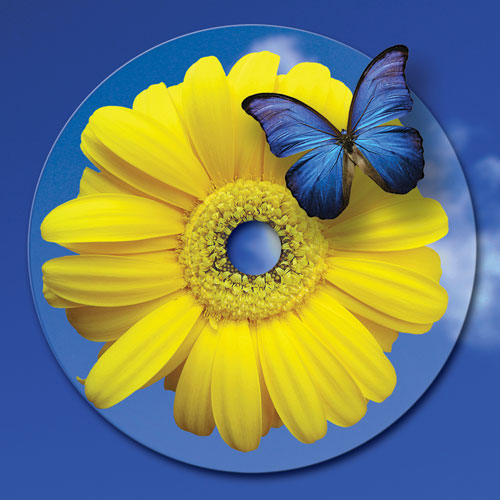 flower-and-butterfly-cd