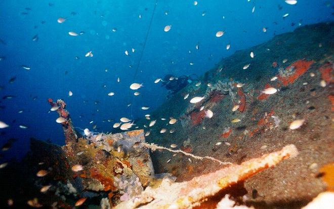 top10-wrecks-dive-greece-002