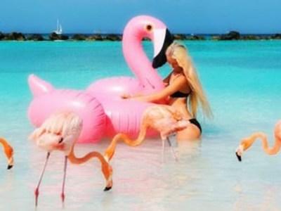 7 παραλίες με λίγο κόσμο αλλά πολλά ζώα