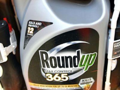 Καρκινογόνο το ζιζανιοκτόνο Roundup
