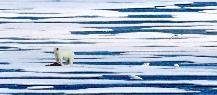 Ρεκόρ στο λιώσιμο των πάγων στην Γροιλανδία