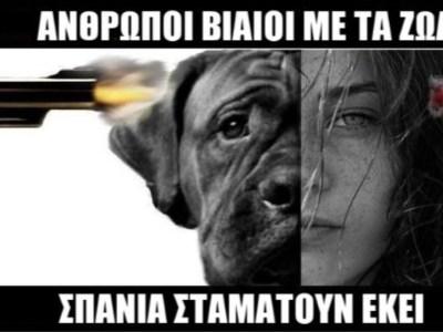 Η κακοποίηση ζώων φέρνει κακοποίηση ανθρώπων