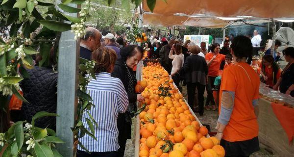Το cretangastronomy.gr στην 6η Γιορτή Πορτοκαλιού στο Φόδελε!