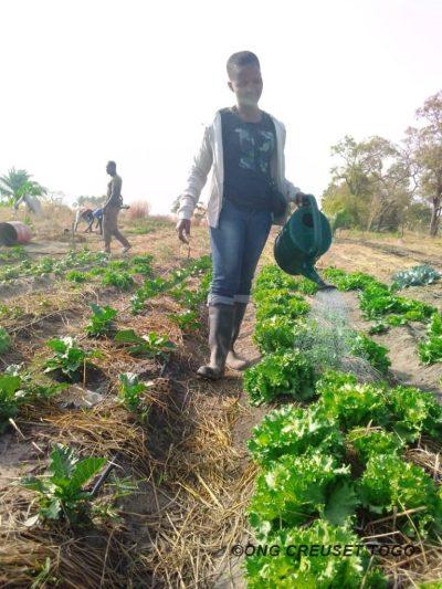 Entrepreneuriat agricole des femmes : la jeune fille KOKOU Nawou Pierrette veut relever le défi