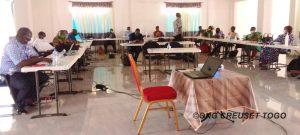 Projet de renforcement de la société civile pour la lutte contre les violences de genre au Togo