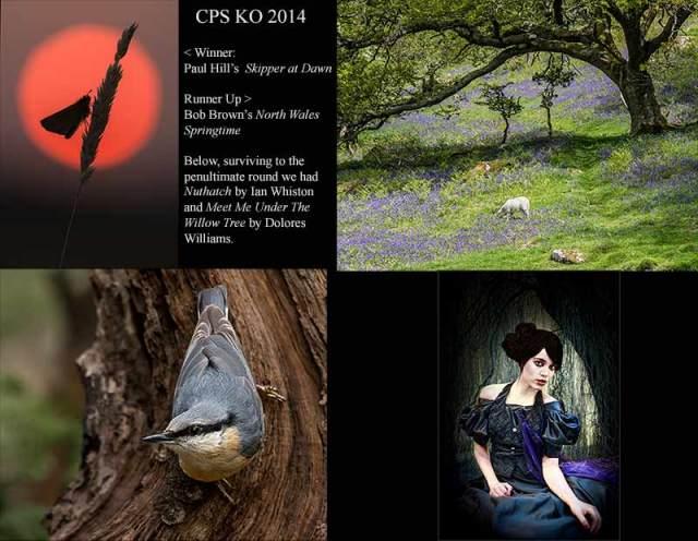 CPS-KO-2014web