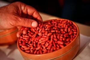 Los principales productores mundiales de frijoles secos son Brasil, India, Birmania, China, Estados Unidos, México, Tanzania, Kenia, Argentina y Uganda. . EFE/Archivo