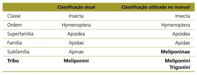 Classificação Abelhas Nativas