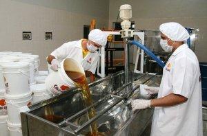 Boas práticas de manipulação do mel