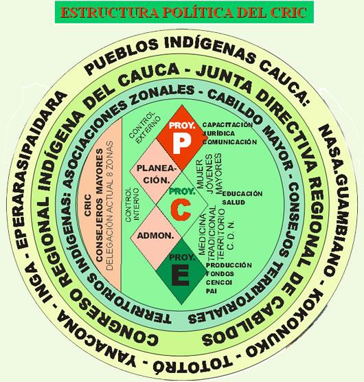 Estructura Política Del Cric Consejo Regional Indígena Del