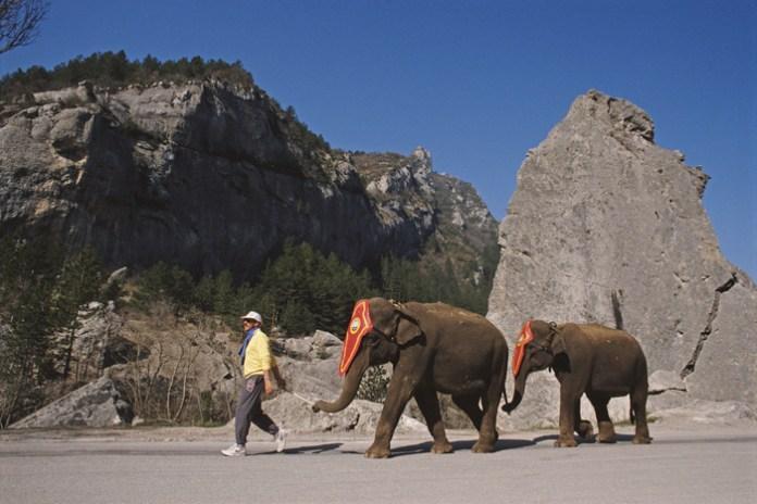 The year 1995, Sir Ian Botham's Beefy's hike around the Himalayas