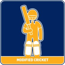 Modified Cricket