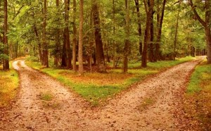 Don't Stray off Gods Path