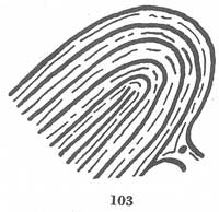 Fig. 103