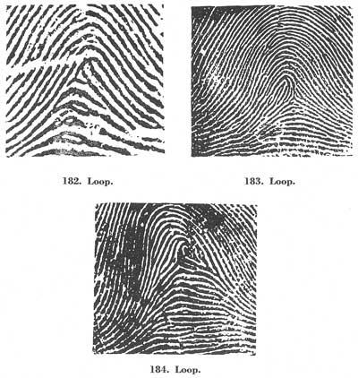 Figs. 182-184