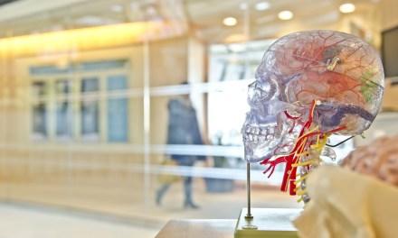 Estudio de IBM asegura que el sector salud será pionero de la blockchain