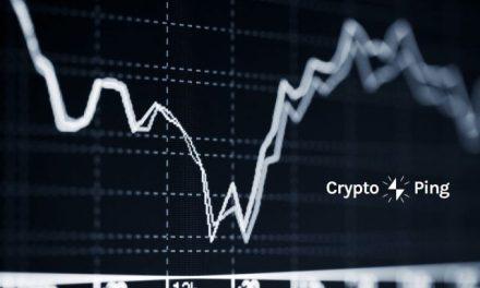 CryptoPing: el robot que monitorea el mercado de criptomonedas para una buena inversión