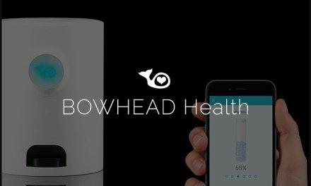 ICO de Bowhead Health, la aplicación blockchain para la salud, cerrará en breve