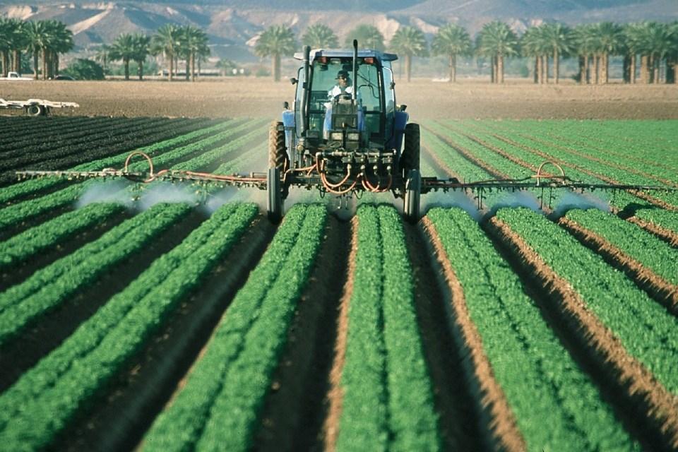 Agricultura inteligente: así es cómo blockchain participa en la revolución digital de la siembra