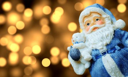 1 millón de dólares en bitcoins fue el regalo de navidad de Pinneaple Fund al Archivo de Internet
