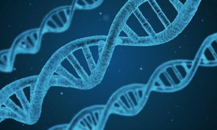 Estado de India planea almacenar datos de ADN de sus ciudadanos en plataforma blockchain