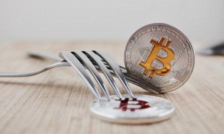A una semana del fork de Bitcoin Cash, esto es lo que ha pasado en su red