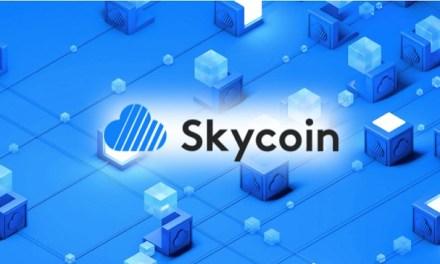 Equipo de Skycoin reporta: Víctimas de malversación y robo