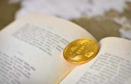 Bitcoin-Blockchain-Literatura-Traducción
