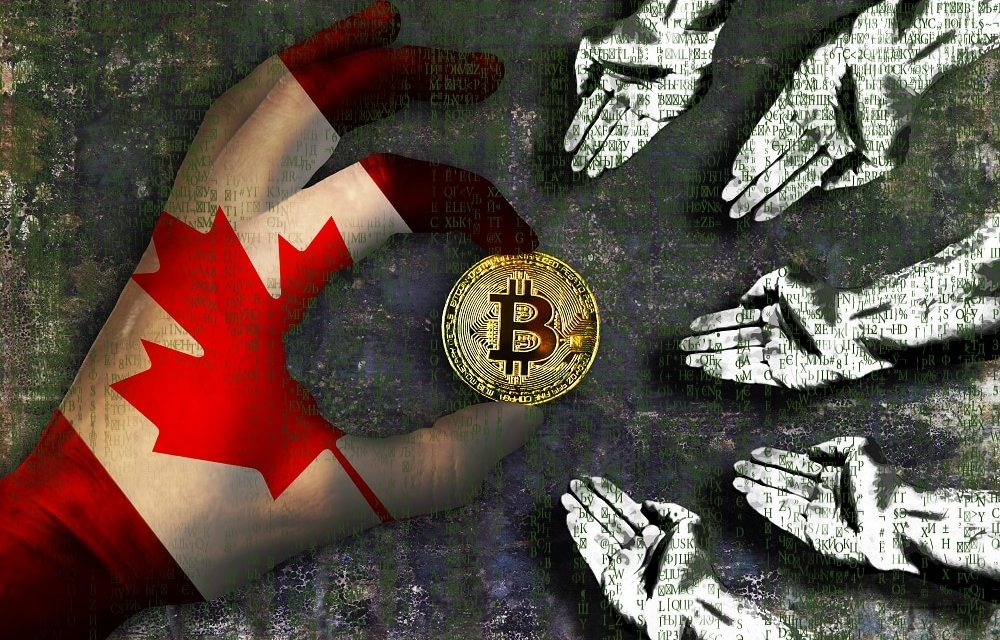 Banco Central de Canadá: casi 2 millones de personas poseen bitcoins en el país